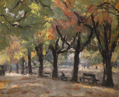 Viale alberato con panchine, autunno