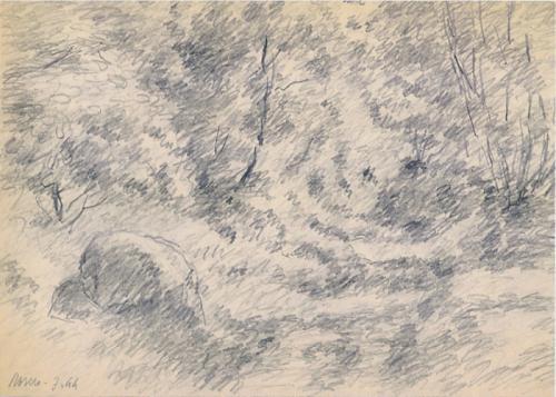 Roccia ai margini del bosco