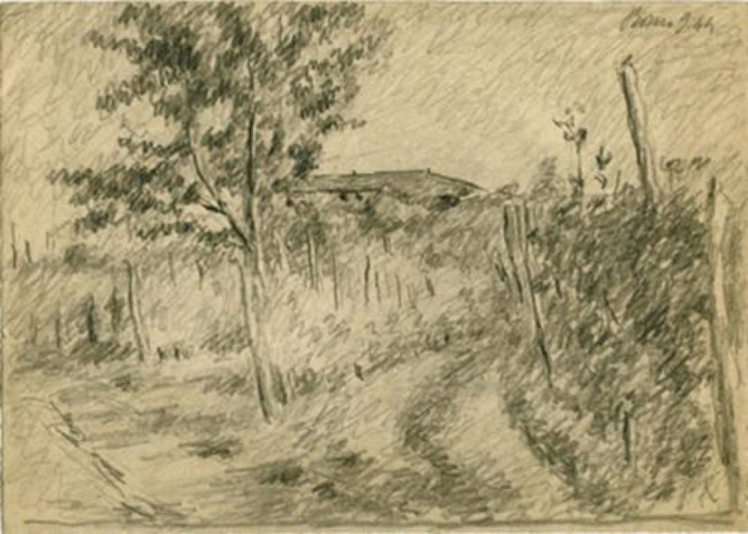Sentiero fra le vigne