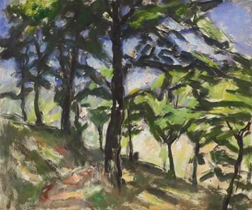 Sottobosco (Studio d'alberi)