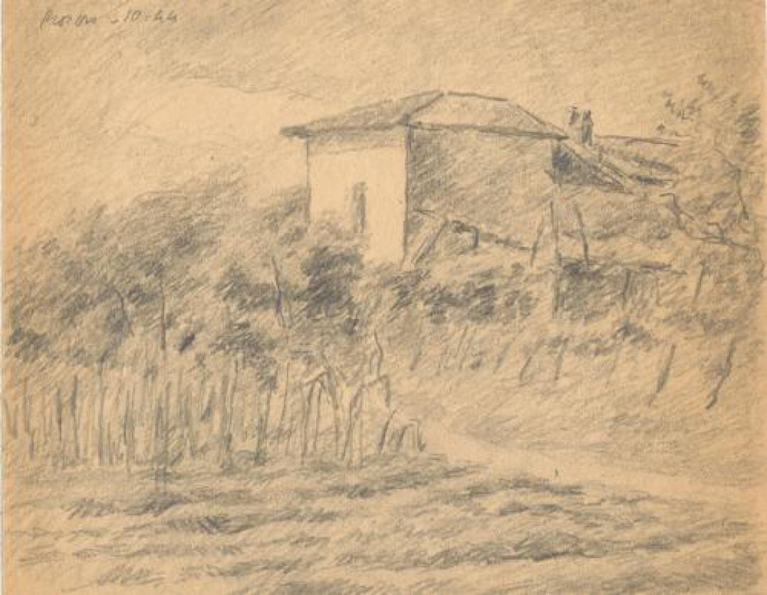 Casa e vigne a Rosero