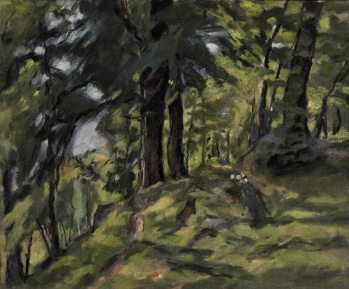 Entrata al bosco
