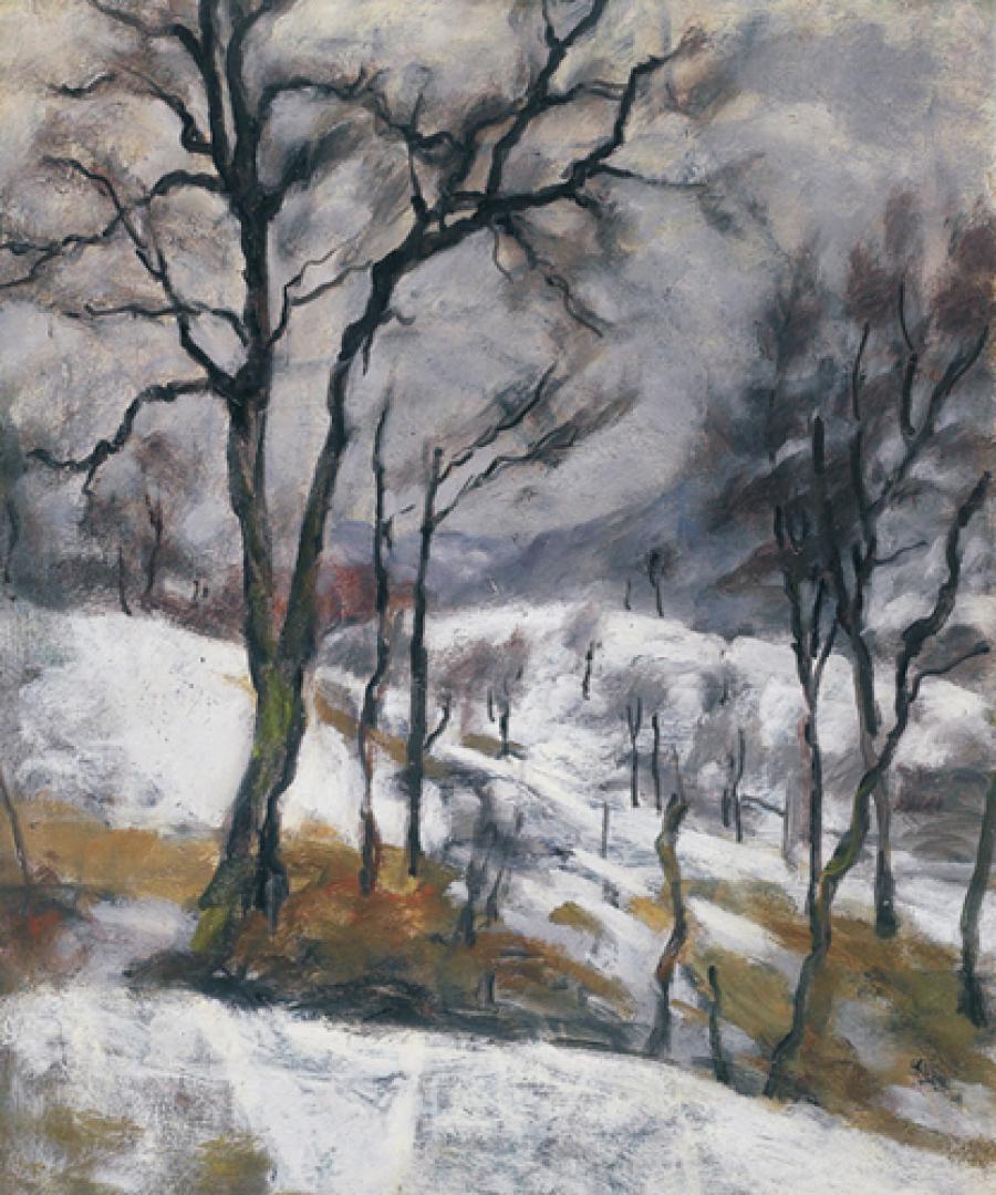 Paesaggio invernale a Drusacco