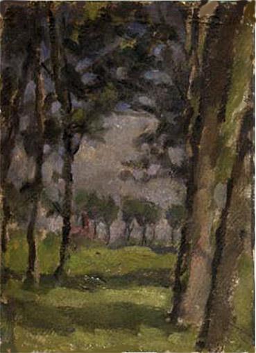 Campagna con alberi